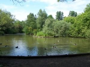 Der See in der Mitte des Gebiets